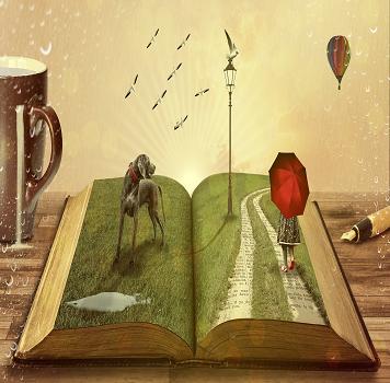 Navegando entre libros